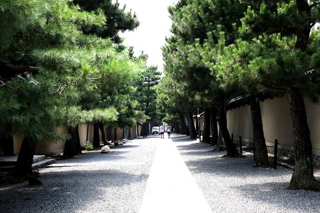 龍源院の境内の風景
