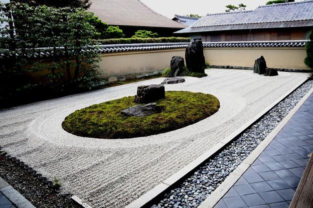 龍源院の方丈の石庭