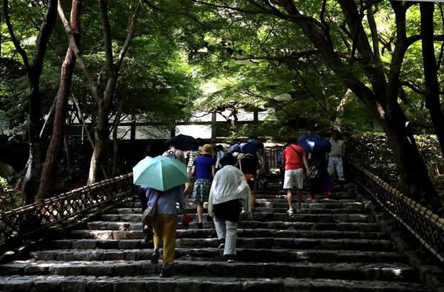 龍安寺 庫裡への階段