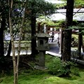 龍安寺の庭園2