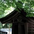 Photos: 龍安寺寺院内風景