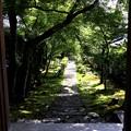 西源院の参道