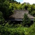 龍安寺より祇王寺への風景2