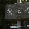 Photos: 祇王寺の表札