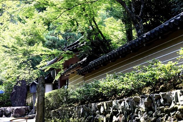 Photos: 祇王寺風景1