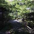Photos: 祇王寺の風景2