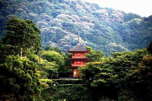 清水寺の欄干からの五重塔