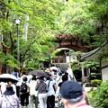 Photos: 南禅寺 観光風景