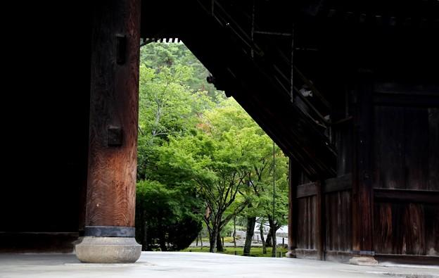 南禅寺 三門よりの風景2
