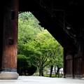 Photos: 南禅寺 三門よりの風景2