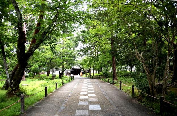 南禅寺境内風景