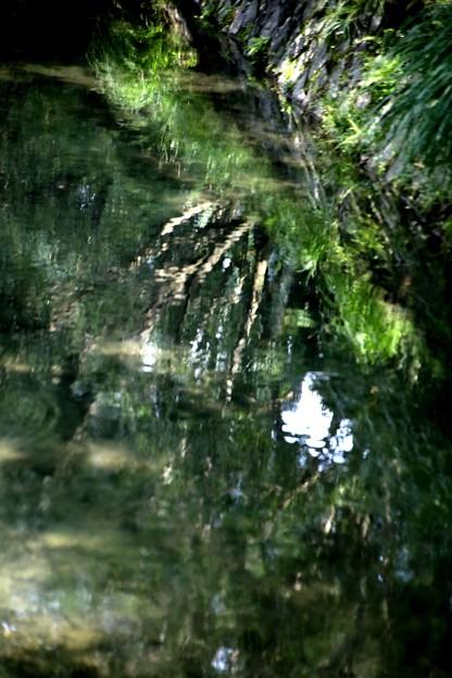 水面への映り込み