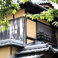 Photos: 屋根に人物像