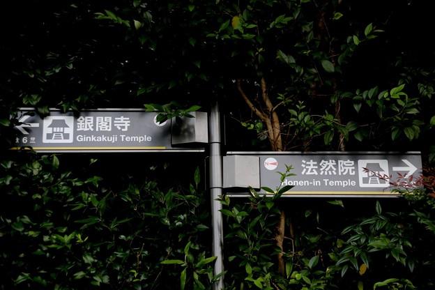 銀閣寺へ散策