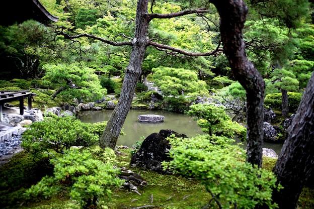 銀閣寺庭園風景1