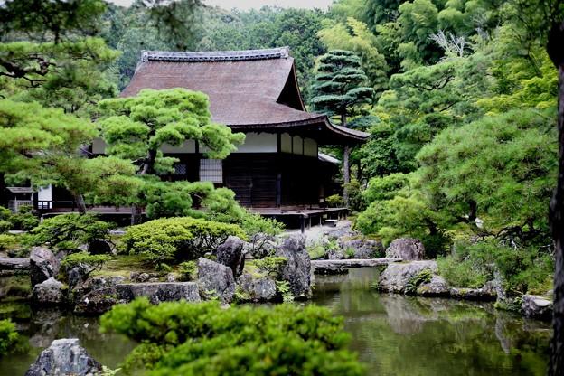銀閣寺錦鏡池より東求堂風景