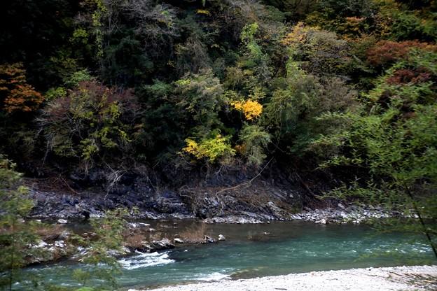 久慈川風景