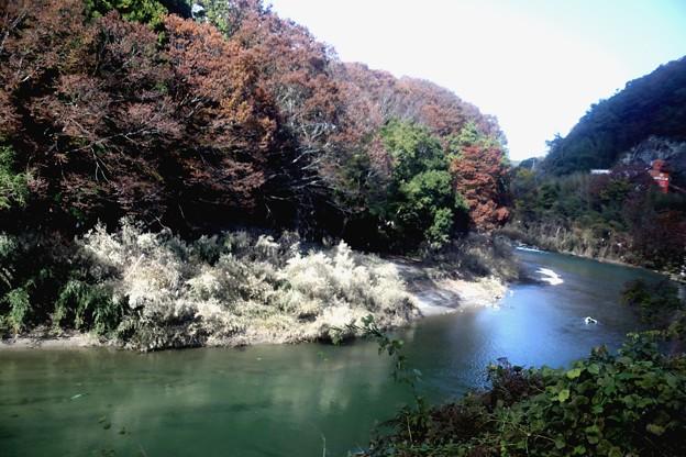 久慈川の紅葉風景2