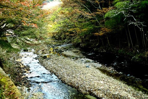 袋田の滝の川