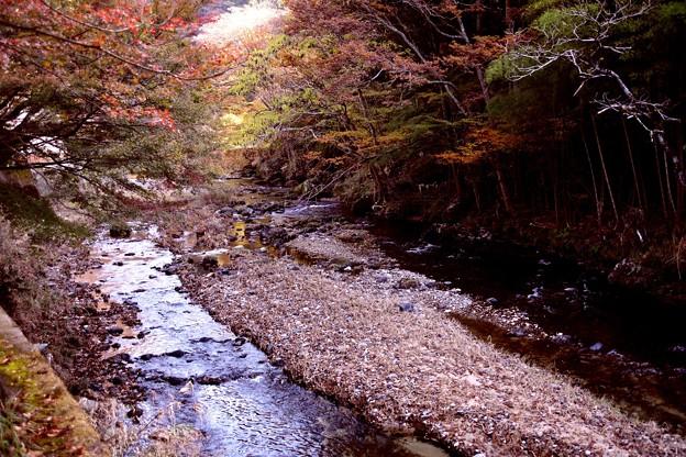 袋田の滝の川(滝川)