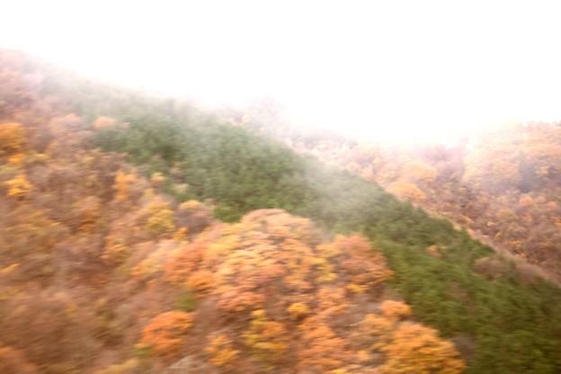 紅葉の山 車窓より