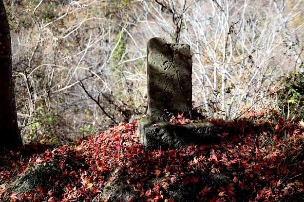 石碑への落葉