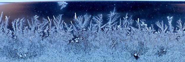 霜の結晶模様3