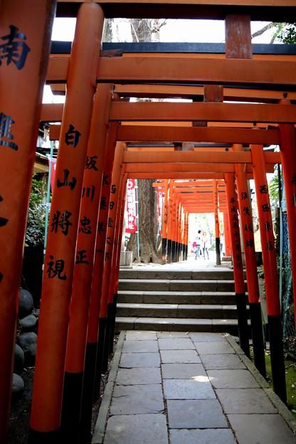 花園稲荷神社 鳥居(上野公園)