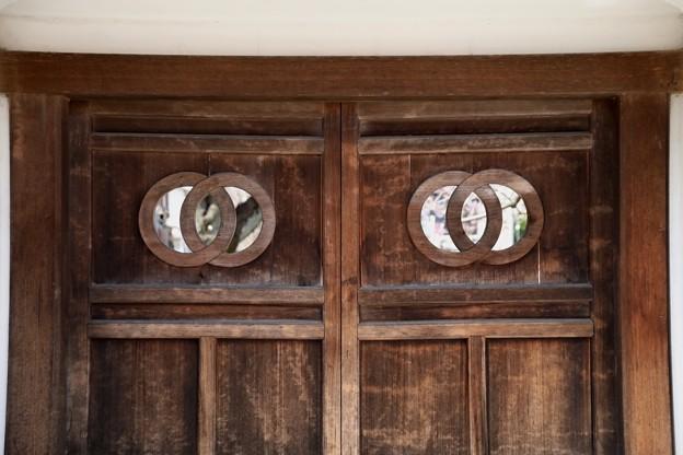 新光寺の山門の扉