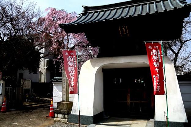 新光寺の山門