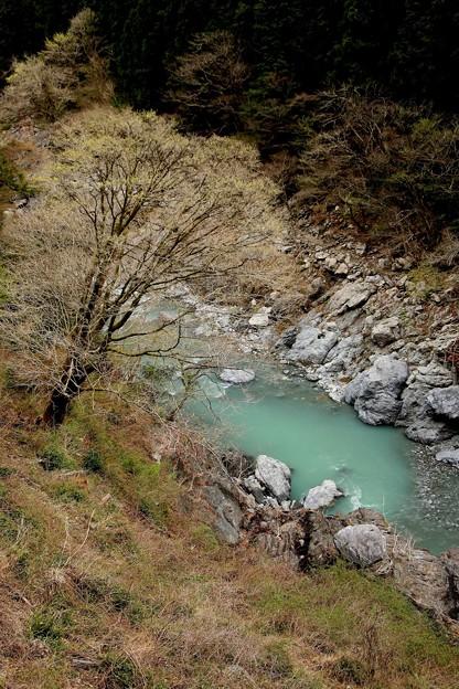 多摩川の岩風景
