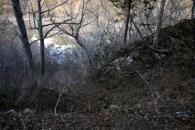 谷への傾斜風景