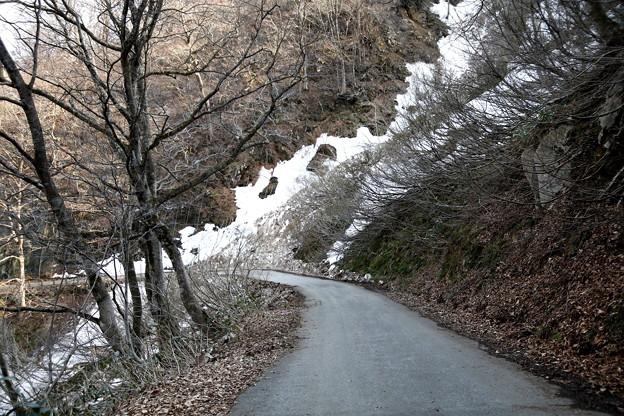 雪崩の形跡の残雪風景