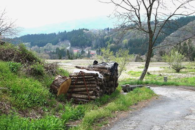 薪と山のある春景色