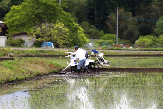 田んぼの土をならす作業