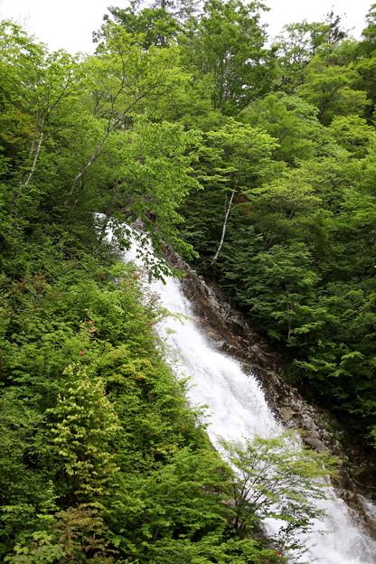 シャクナゲの滝1