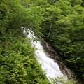 Photos: シャクナゲの滝1