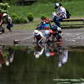 Photos: 池の傍で亀と遊ぶ