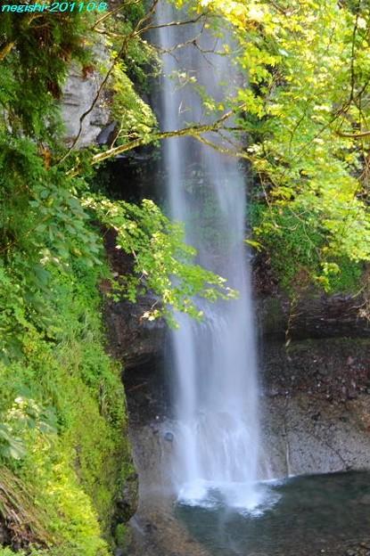 奥利根の裏見の滝