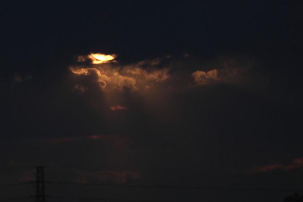 Photos: 夕方の光