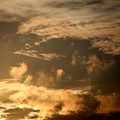 Photos: 夕方の雲 彩雲7