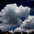Photos: 今日の雲(20200905)2