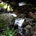 Photos: 黒山三滝の沢風景9