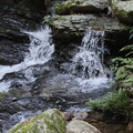 Photos: 黒山三滝の沢風景10