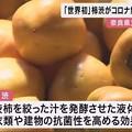 Photos: 柿渋がコロナ無害化