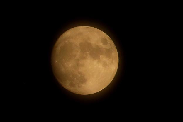 満月(20200930)