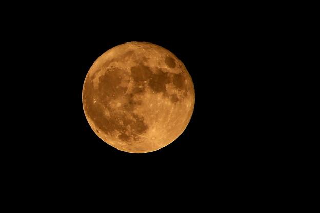 満月(20201002)