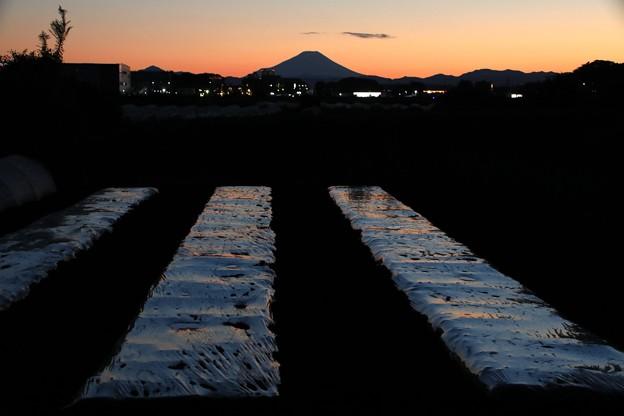 暮れゆく富士山2