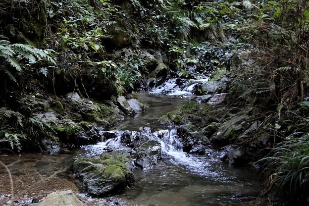 宿谷の滝の沢の流れ2