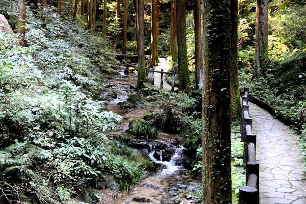 宿谷の滝への道